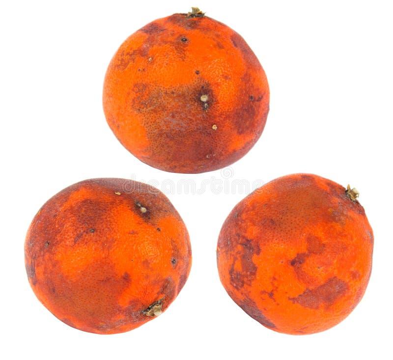 Arancio difettoso immagine stock libera da diritti