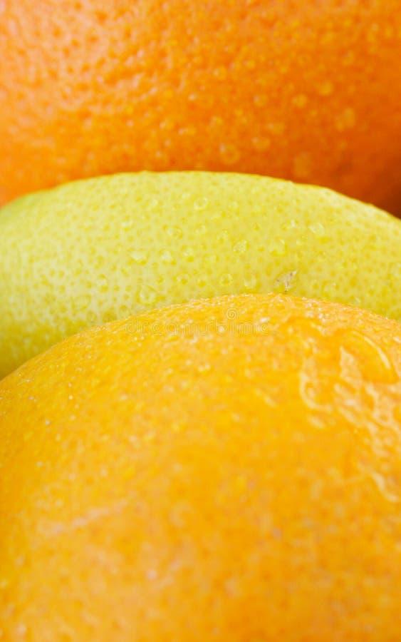 Arancio e limone immagine stock libera da diritti