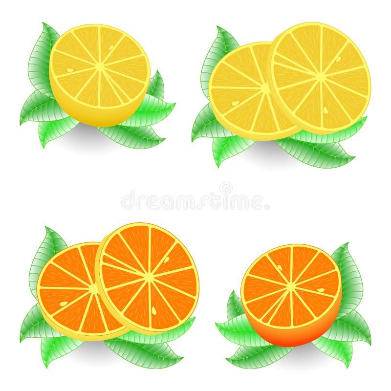 Arancio e limone affettati royalty illustrazione gratis