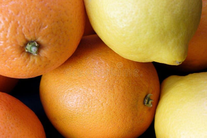 Arancio e limoni immagine stock