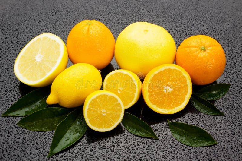 Arancio, limone e pompelmo su surgace bagnato fotografia stock