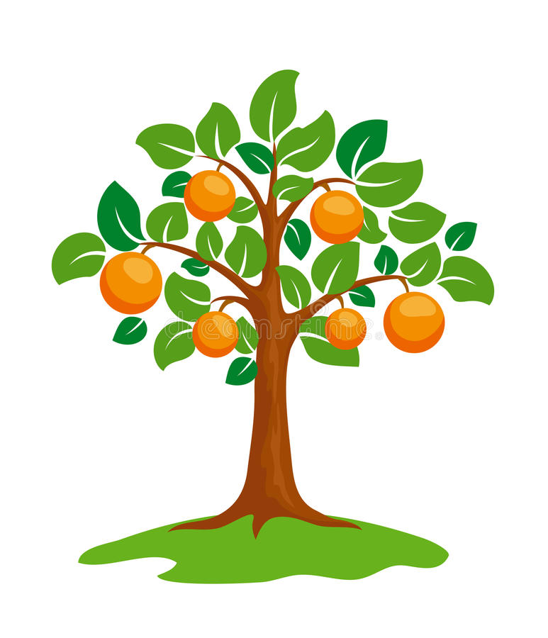 Arancione-albero illustrazione di stock