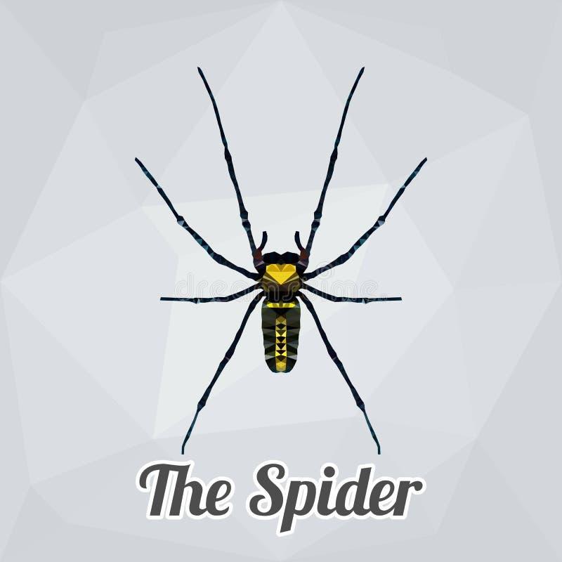 Aranha completa do corpo do vetor do polígono ilustração royalty free