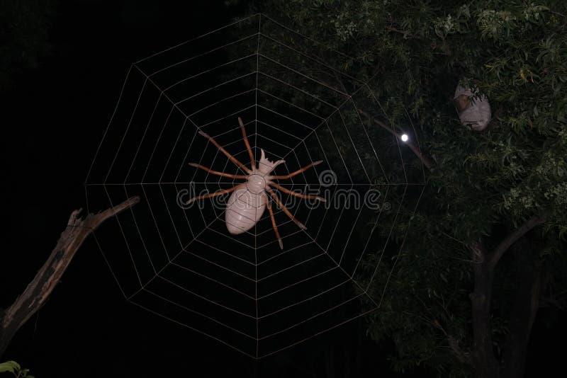 Aranha e rede de Artifitial foto de stock