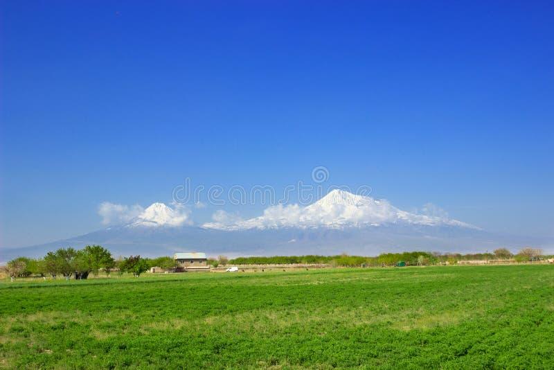 Araratberg royalty-vrije stock afbeelding