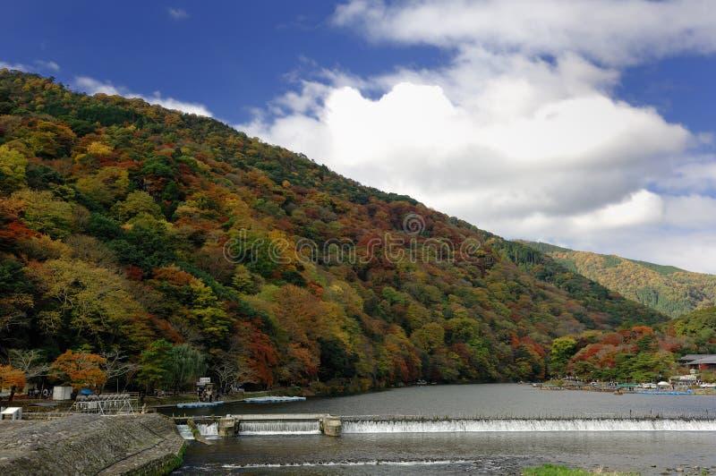 arashiyama япония kyoto стоковые фото