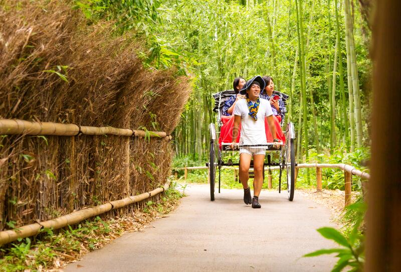 Arashiyama Bamboo Grove visit in carriage royalty free stock image