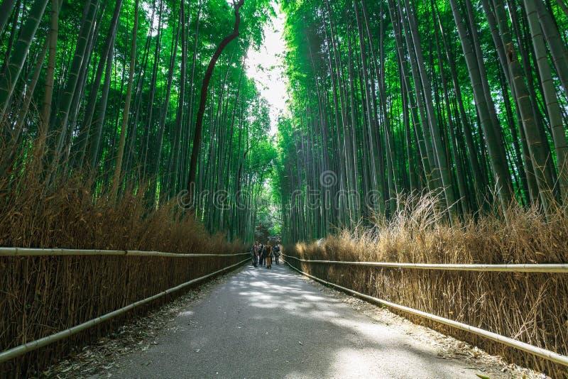 Arashiyama bambudunge royaltyfri fotografi