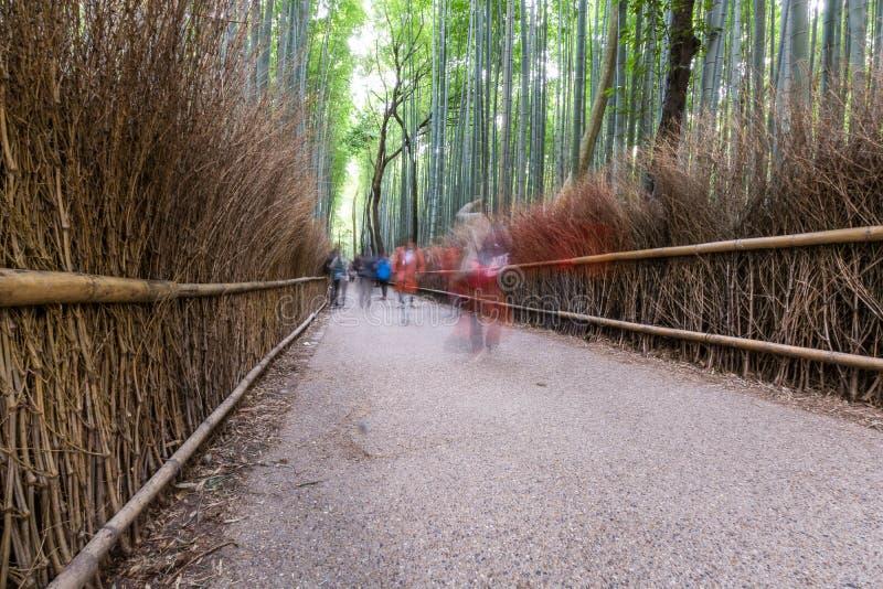 Arashiyama bambuspår arkivfoto