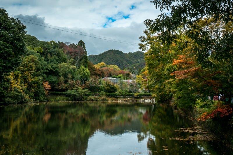 Arashiyama i Kyoto, Japan royaltyfria foton