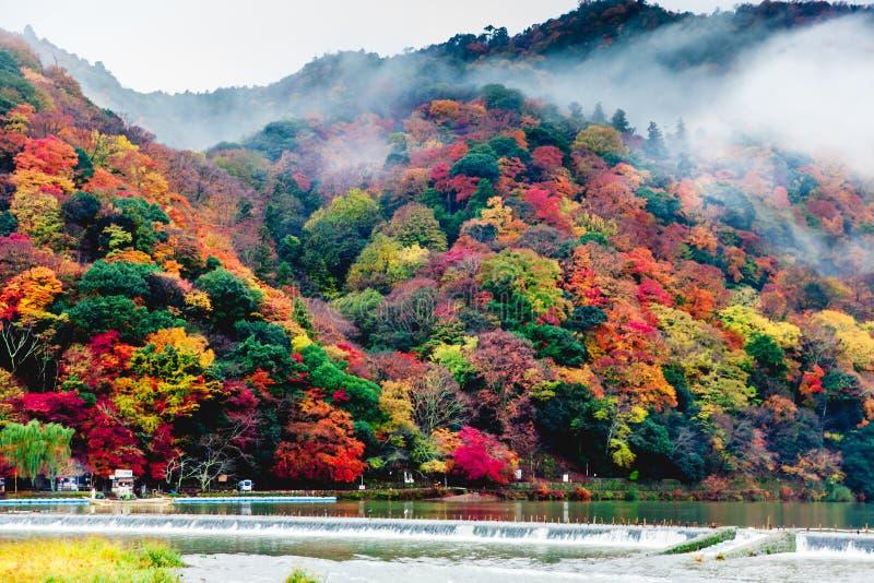 Arashiyama, Kyoto, Japan stockbild