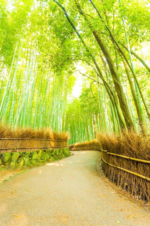 Arashiyamabamboe Forest Twisting Road Nobody V royalty-vrije stock foto's