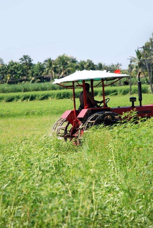Aratura del coltivatore immagine stock libera da diritti
