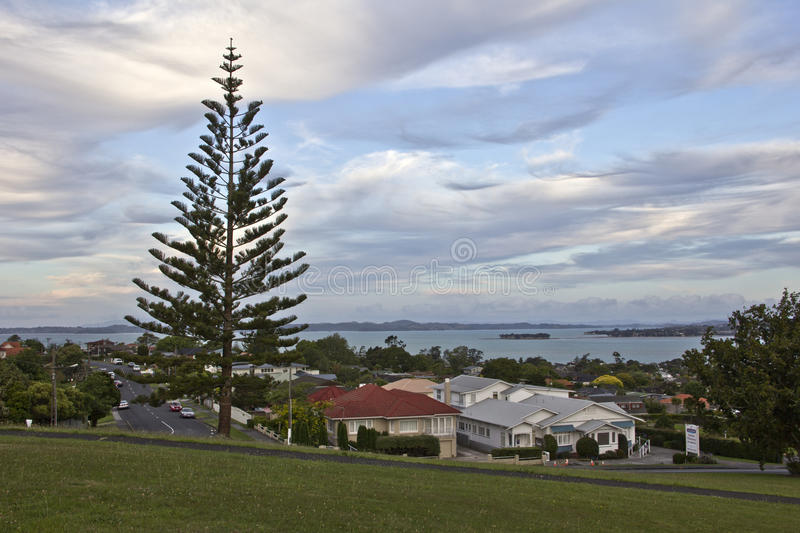 Araucaria, roofs of houses in the Evening Landscape royalty free stock image