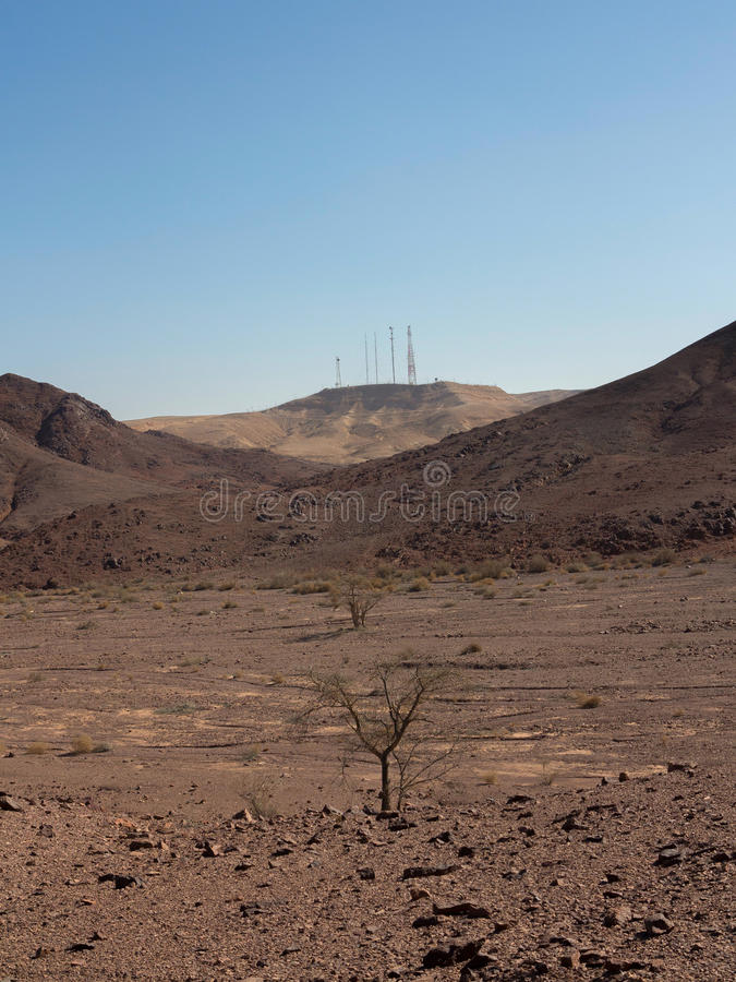 Arava desert