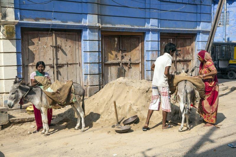 Arbeider met Pakmuilezels in de Straten van Jodhpur, India stock afbeeldingen