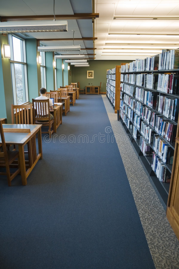 Arbeiten in der Bibliothek lizenzfreies stockfoto