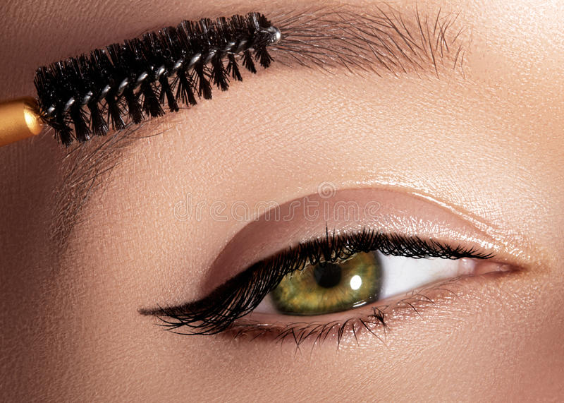 Arbeiten Sie die Frau um, die Lidschatten, Wimperntusche auf Augenlid, Wimper und Augenbraue unter Verwendung der Make-upbürste a lizenzfreies stockbild