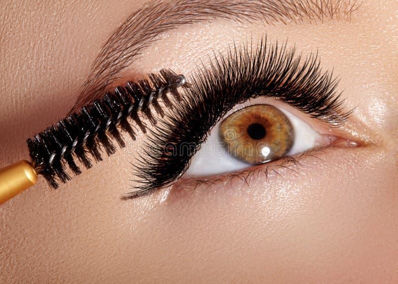 Arbeiten Sie die Frau um, die Lidschatten, Wimperntusche auf Augenlid, Wimper und Augenbraue unter Verwendung der Make-upbürste a lizenzfreie stockfotos