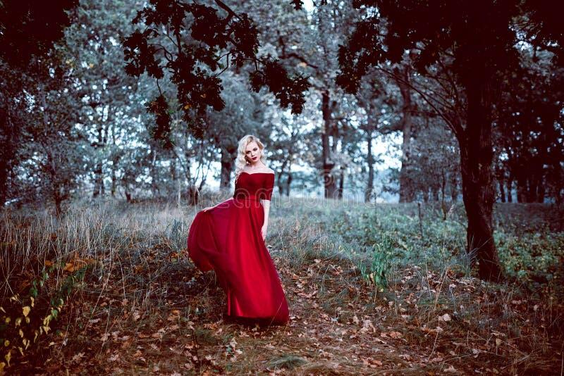 Arbeiten Sie herrliche junge Blondine im schönen roten Kleid in einer Märchenwaldmagieatmosphäre um Retouched Schuss tonend lizenzfreies stockbild