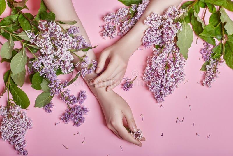 Arbeiten Sie Kunsthandnaturkosmetikfrauen, helle purpurrote lila Blumen in der Hand mit hellem Kontrastmake-up, Handpflege um kre stockfotografie