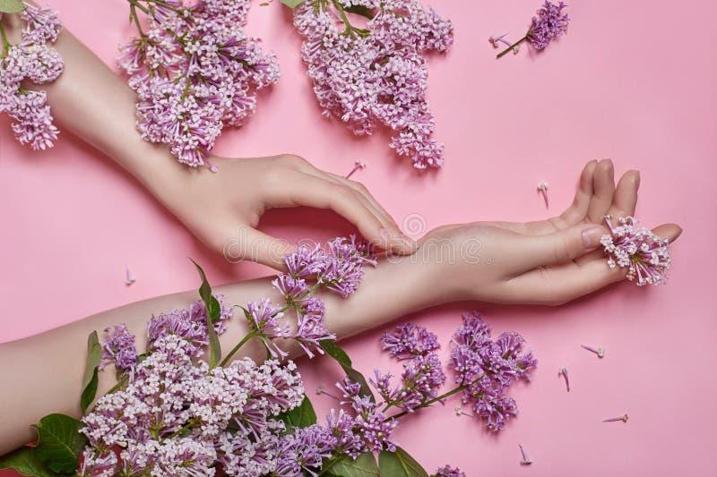 Arbeiten Sie Kunsthandnaturkosmetikfrauen, helle purpurrote lila Blumen in der Hand mit hellem Kontrastmake-up, Handpflege um kre stockfotos