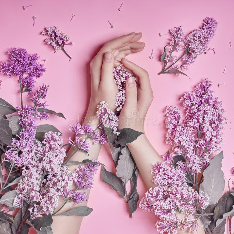 Arbeiten Sie Kunsthandnaturkosmetikfrauen, helle purpurrote lila Blumen in der Hand mit hellem Kontrastmake-up, Handpflege um kre lizenzfreie stockfotografie