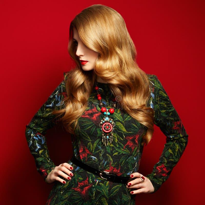 Arbeiten Sie Porträt der eleganten Frau mit dem ausgezeichneten Haar um lizenzfreie stockfotos