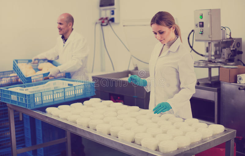 Arbeitskräfte auf Käseproduktionsfabrik stockfotos