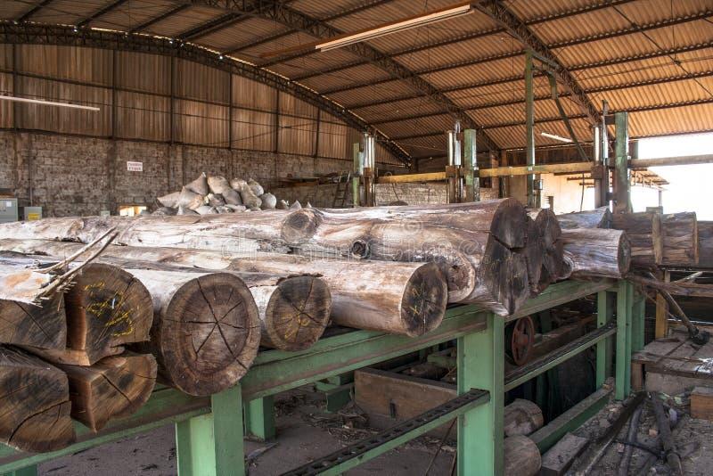 Arbeitskräfte in einem sawmil stockfotos