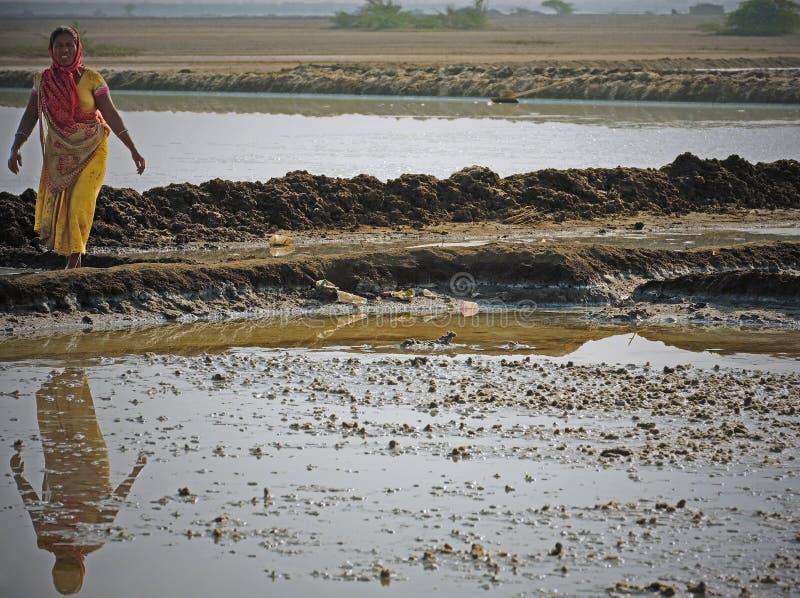 Arbeitskraft in den Gujaratisalzebenen, Indien lizenzfreie stockbilder