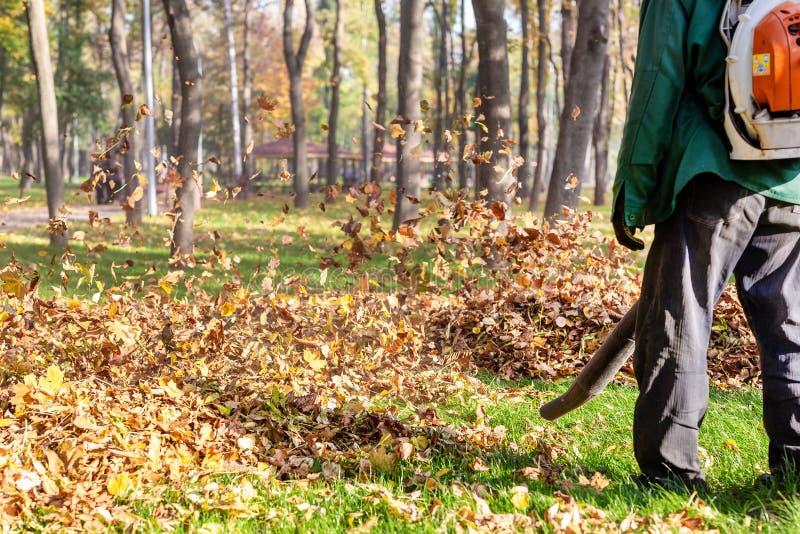 Arbeitskraft, die Hochleistungslaubsauger im Stadtpark betreibt Entfernen von gefallenen Blättern im Herbst Blätter, die oben wir lizenzfreies stockfoto