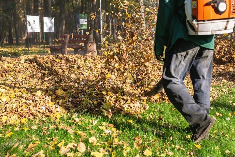 Arbeitskraft, die Hochleistungslaubsauger im Stadtpark betreibt Entfernen von gefallenen Blättern im Herbst Blätter, die oben wir stockbilder