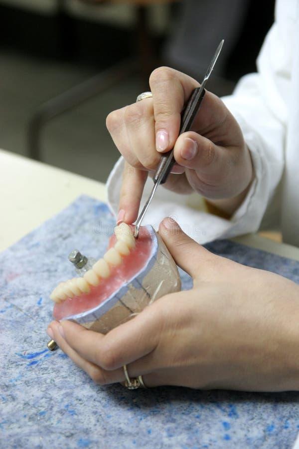 Arbeitskraft, gefälschte Zähne produzierend stockfotos