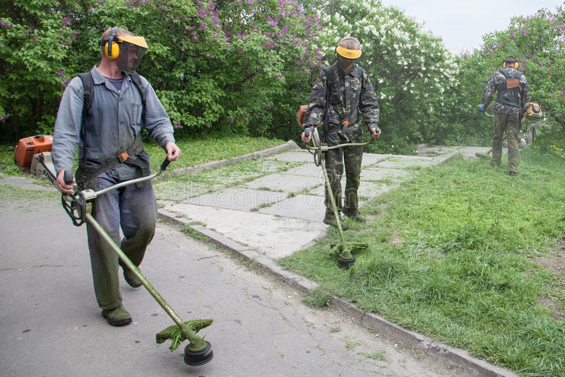 Arbeitskraft in M.M. Gryshko National Botanical-Garten (Kiew, Ukraine). stockfoto