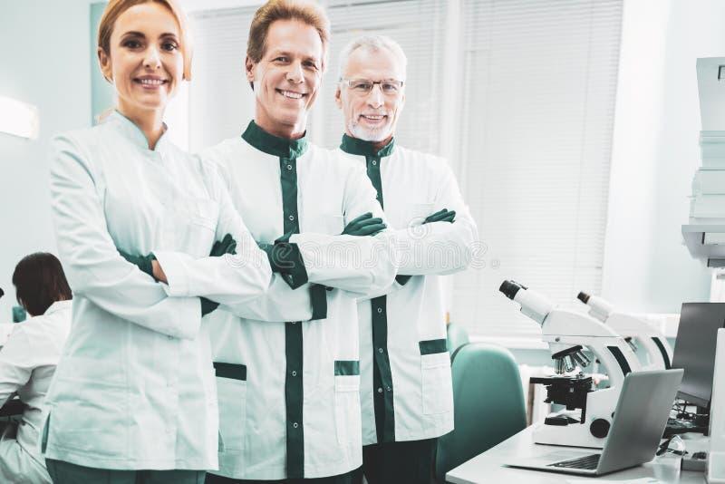 Arbeitswissenschaftler, die bei der Planung der neuen Entdeckung beschäftigt sich fühlen lizenzfreies stockbild