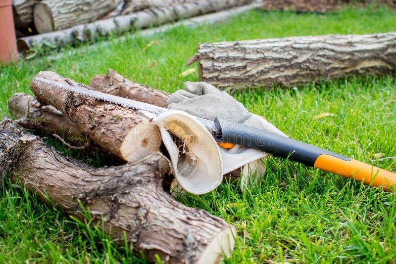 Arbeta i trädgård, en mann som sågar en chump av trä royaltyfri fotografi