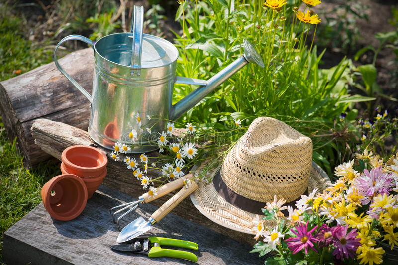 Arbeta i trädgården fotografering för bildbyråer