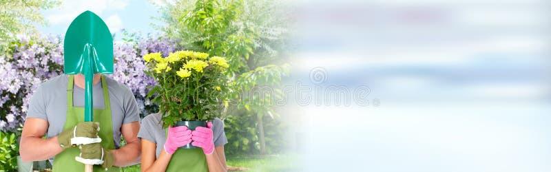 Arbeta i trädgården arkivbilder