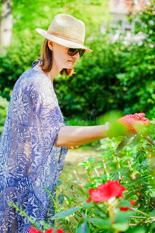 Arbeta i trädgården för kvinna royaltyfria bilder