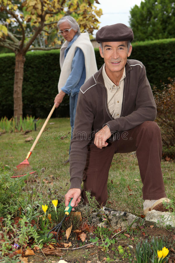 Arbeta i trädgården för morföräldrar royaltyfri bild