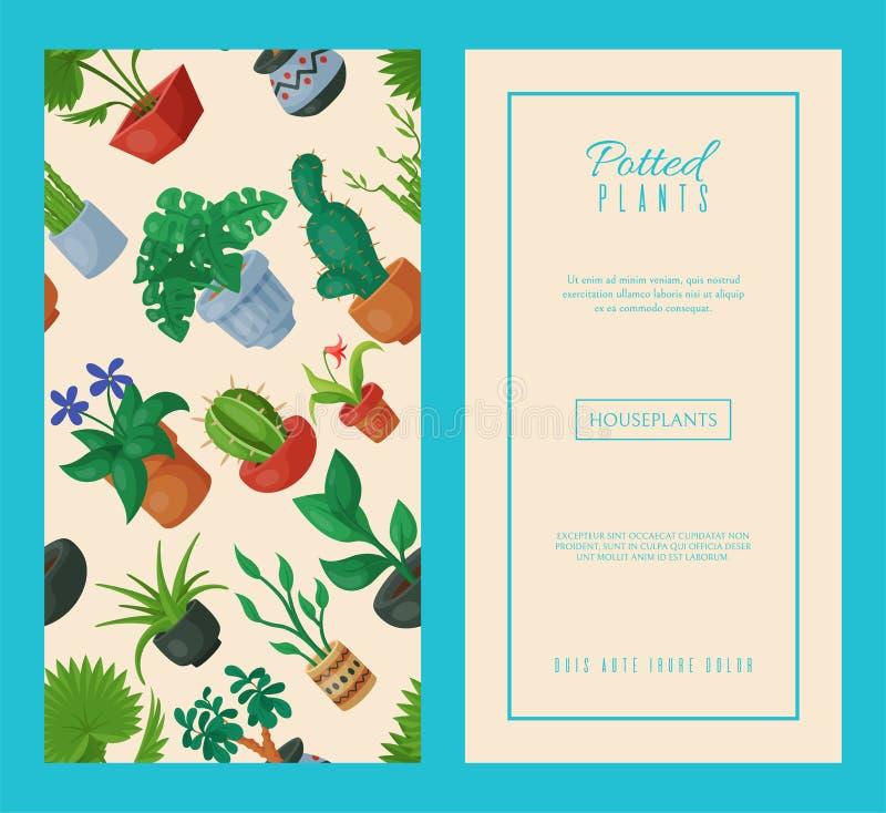 Arbeta i trädgården för naturhemgarnering Inomhus växter i dekorativ flora för blomkrukaskönhet Inomhus floriculture för husblomm royaltyfri illustrationer
