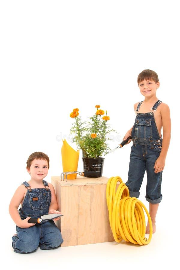 arbeta i trädgården för pojkar royaltyfri fotografi