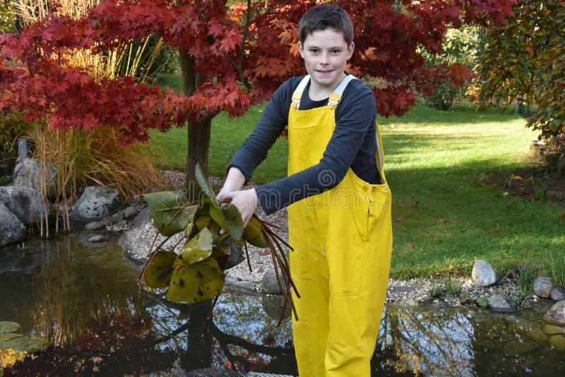 Arbeta i trädgården för pojke royaltyfria bilder