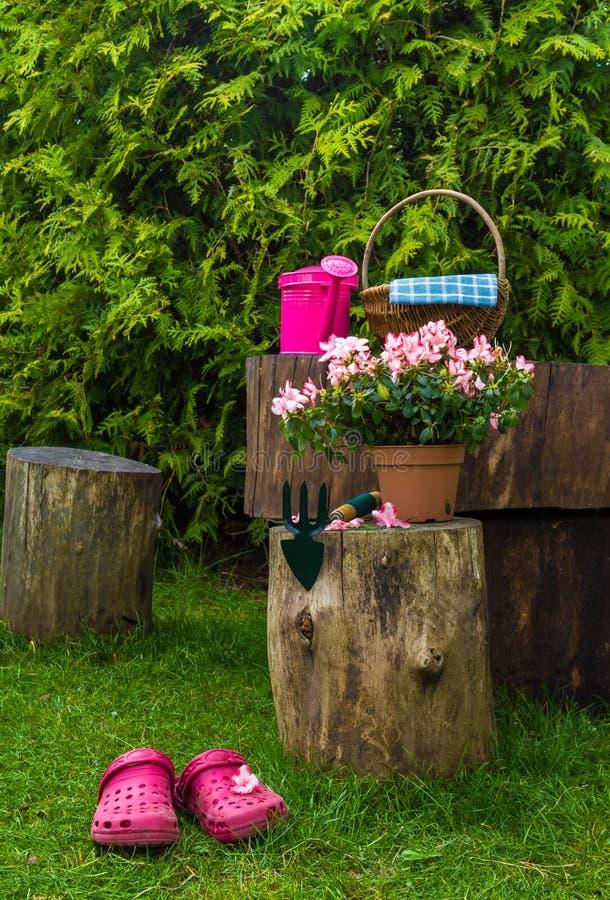 Arbeta i trädgården för redskap för trädgårds- hjälpmedel för vår royaltyfri foto