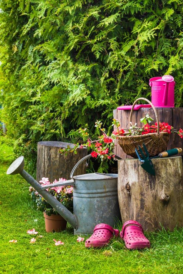 Arbeta i trädgården för redskap för trädgårds- hjälpmedel för vår arkivbilder