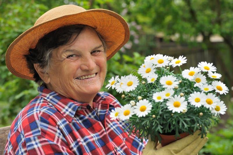 arbeta i trädgården hög kvinna royaltyfri fotografi