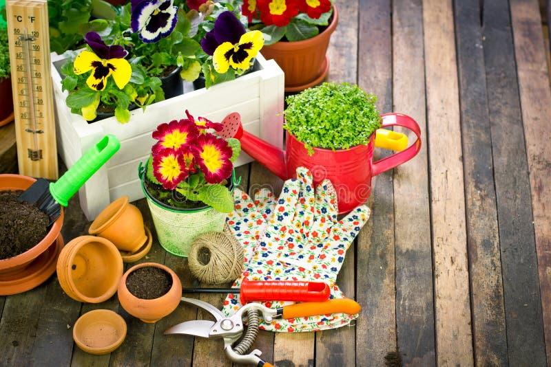 Arbeta i trädgården hjälpmedel och blommor royaltyfri fotografi