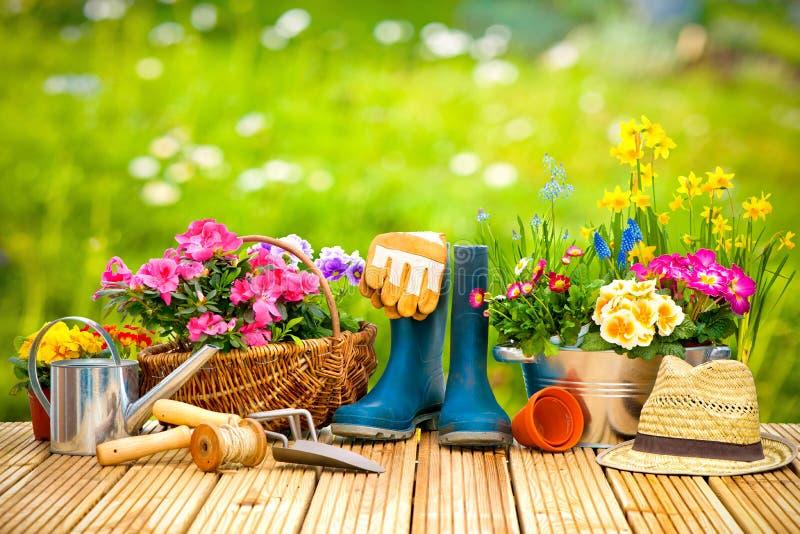 Arbeta i trädgården hjälpmedel och blommor på terrassen royaltyfria foton