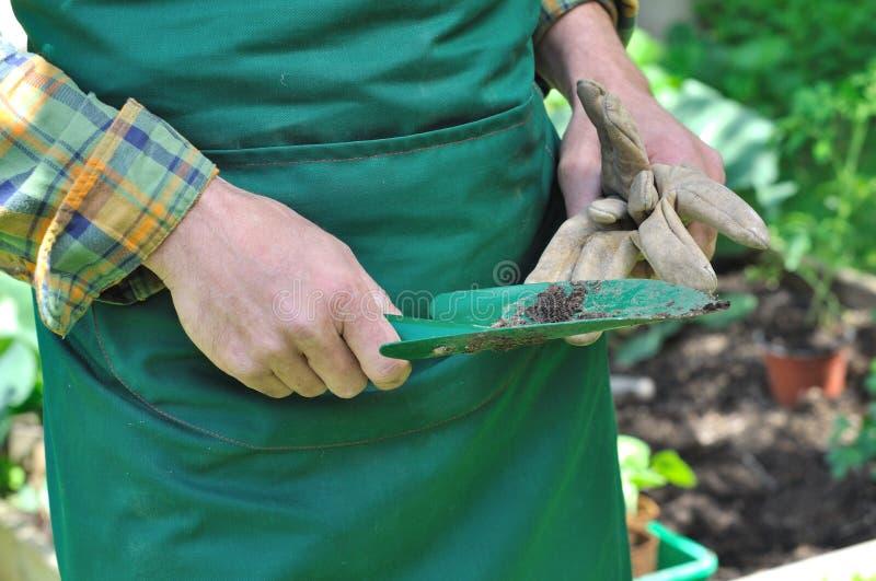 Arbeta i trädgården hjälpmedlet royaltyfri foto